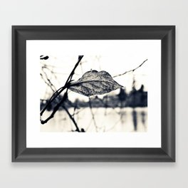 Lakeside beauty Framed Art Print