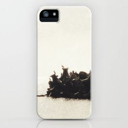 Morning Breeze iPhone Case