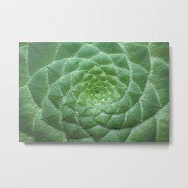 Green Spiral Botanical Metal Print