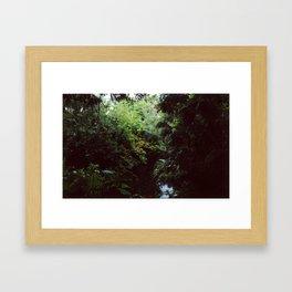 Swiss Family Treehouse Framed Art Print