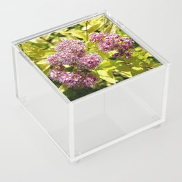 Lilac flowers Acrylic Box