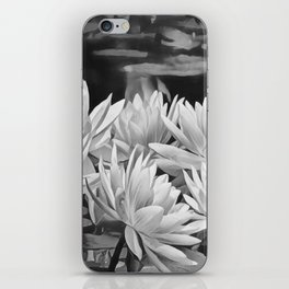 Water Lily in Black and White iPhone Skin