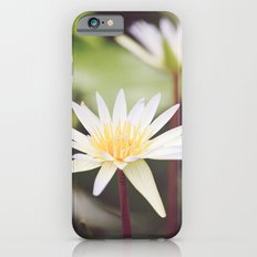 Water Lilies iPhone 6s Slim Case