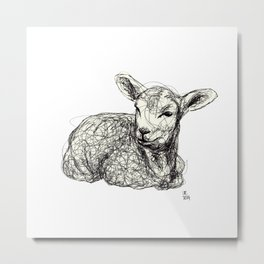 Baby Animals - Lamb Metal Print