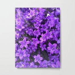 Violetta Blue Metal Print