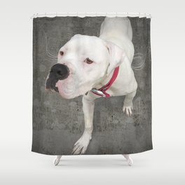TSUKi (shelter pup) Shower Curtain
