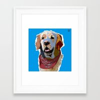 golden retriever Framed Art Prints featuring Golden Retriever  by TiannaHarman