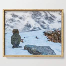 Kea parrot bird in the snow mountains of New Zealand Serving Tray