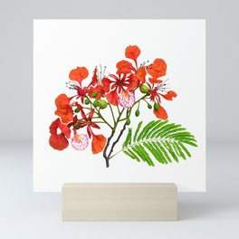 Royal Poinciana Mini Art Print