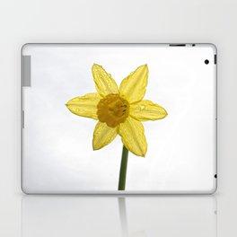 Daffodil VI Laptop & iPad Skin
