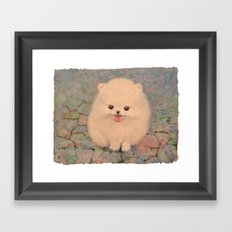 Pomeranian Framed Art Print