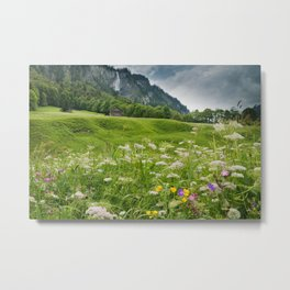 White Pine Valley Metal Print