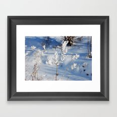 Winter sprig Framed Art Print
