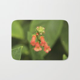 Kohleria from Bud to Bloom Bath Mat