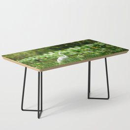 Great Egret in a Green Field Coffee Table