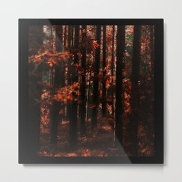 I can feel it in the trees Metal Print