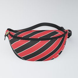 New line 2 Fanny Pack