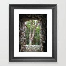 Window to the Woods, St. John, Virgin Islands, Sugar Mill Stone Ruins,  Framed Art Print