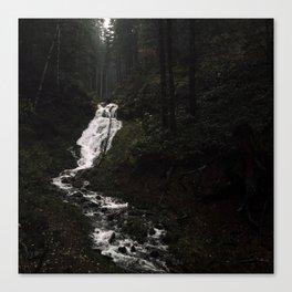 Drift Creek Falls, Tillamook State Forest, Oregon Canvas Print