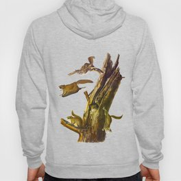 Flying Squirrel Vintage Hand Drawn Illustration Hoody