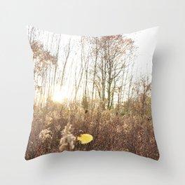 Sunset Haze Throw Pillow