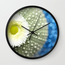 Urchin With Daisy In The Blue... Wall Clock