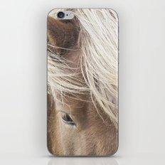Icelandic Horse iPhone & iPod Skin
