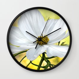 Floral White Cosmos Wall Clock