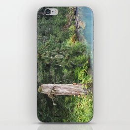 Rain Forest iPhone Skin