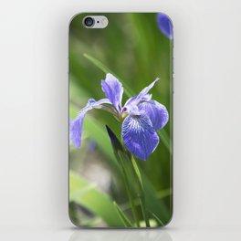 Longwood Gardens - Spring Series 234 iPhone Skin