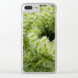 Queen Anne's lace bud Clear iPhone Case