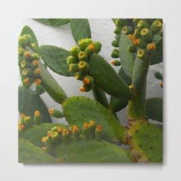 Artsy Cactus Flowers Metal Print