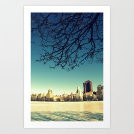 Frozen shadows Art Print