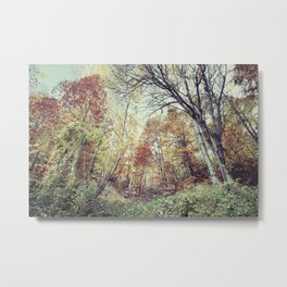 """Into the woods"" Walking at sunset... Metal Print"