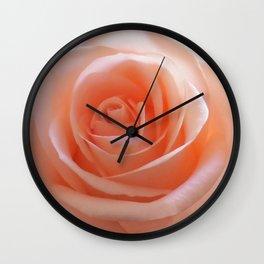 Beautiful peach rose Wall Clock