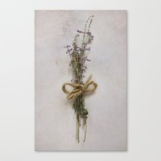 Studies in Flora Canvas Print