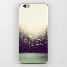 Wintertide. iPhone Skin