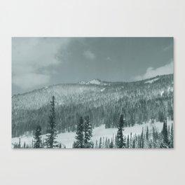 Winter day 28 Canvas Print