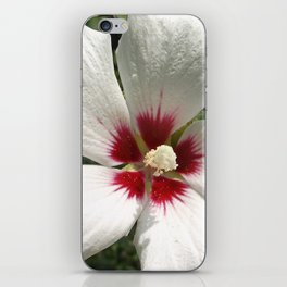 Hibiscus, White iPhone Skin