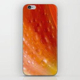 Drops of water on tulip iPhone Skin