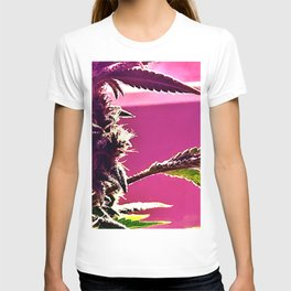 Cannabis Profile in Pink T-shirt