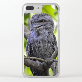 Tawny Frogmouth Clear iPhone Case