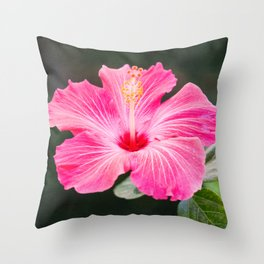 Open for business Throw Pillow