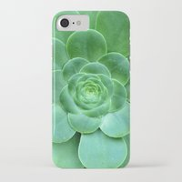 succulent iPhone & iPod Cases featuring Succulent  by Laura Ruth