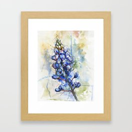 Spring Watercolor Texas Bluebonnet Flowers Framed Art Print