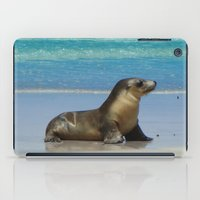 seal iPad Cases featuring Seal by Mel Forshee
