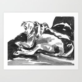 Greyhound -3 Art Print
