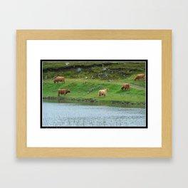 HIGHLAND COWS Framed Art Print