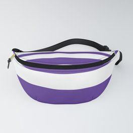 Northwestern Football Color Fanny Pack