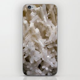 Botanical Gardens II - Crystals #941 iPhone Skin